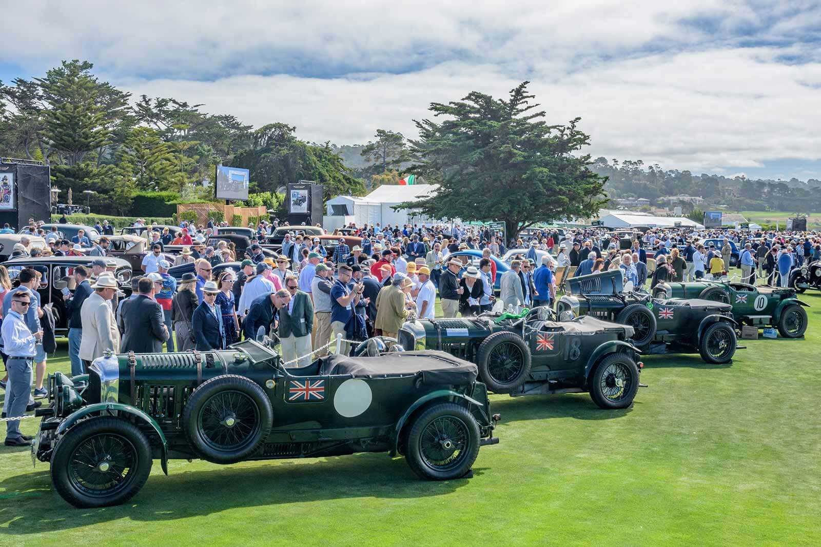 Bentley cars lined up on the show field at the Pebble Beach Concours d'Elegance