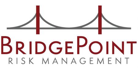BridgePoint Risk Management logo